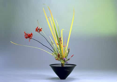 Ikebana A Japanese Flower Arrangement Art The Zen Universe