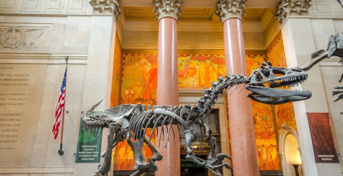 10 Must-See Museums in New York City in 2021